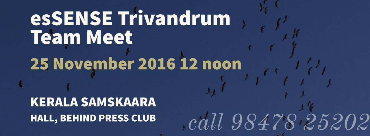 esSENSE Trivandrum  Team Meet